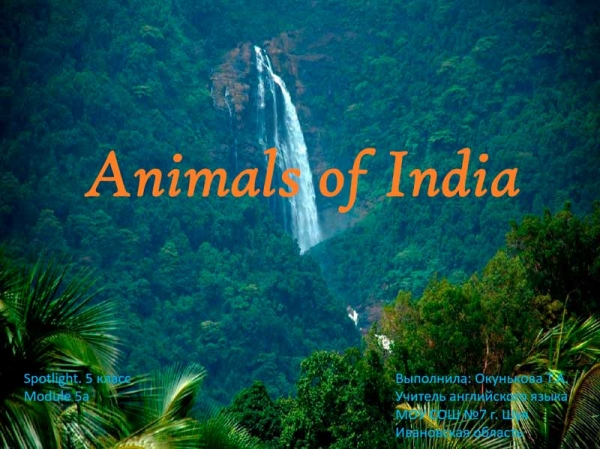 "Spotlight 5 класс. ""Animals of India"""